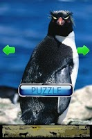 Screenshot of Puzzle Penguin