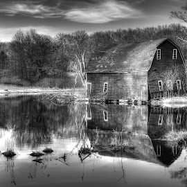 Reflection by Gina Haines Stocker - Buildings & Architecture Other Exteriors ( zimmerman, minnesota, barn, spring, pond,  )
