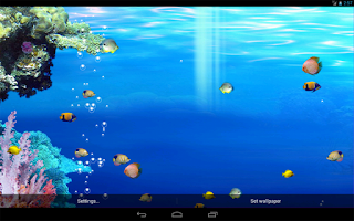 Screenshot of Live Oceans