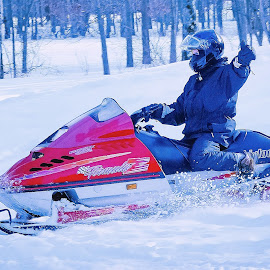 Thumbs Up by Sue Delia - Sports & Fitness Snow Sports ( winter, snowmobile, snow sports,  )