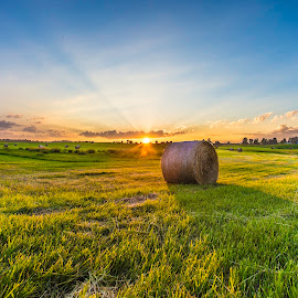 Farmers Sunset by Michael Rea - Landscapes Sunsets & Sunrises ( farm, urban, sunset, lifestyle, lanscape, sunrise, landscapes, sunset sunrise, city )