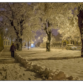 Winter night by Vanja Vidaković - City,  Street & Park  Night (  )