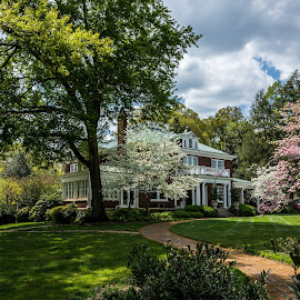 A Stowe Home by Mike Watts - Buildings & Architecture Homes ( home, stowe, belmont )