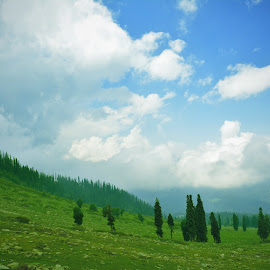 Nature beauty by Payal Kothari - Landscapes Cloud Formations