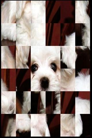 かわいい犬のパズルA2