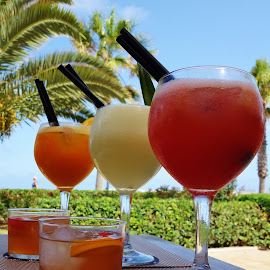 Happy Days by Lucia Azur - Food & Drink Alcohol & Drinks ( palm tree, cocktail, juices, beach, sangria, drinks )