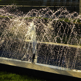 artificial waterfall by Claudia Subotin - Novices Only Street & Candid (  )