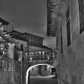 Pontevedra at night by Lidia Noemi - City,  Street & Park  Historic Districts ( puente, noche, calle, arco, pontevedra,  )