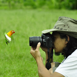 my pose by Sabdo Bintoro - Animals Birds
