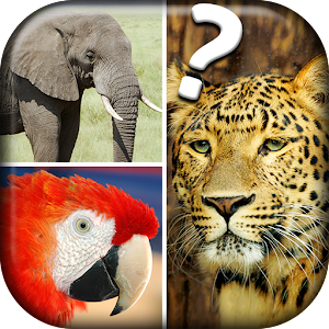 Quiz Me - What Animal Am I?