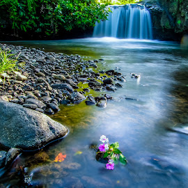 by Kembali Tetap Semangat - Nature Up Close Water ( central java, dugalanisme )