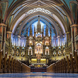 Notre Dame Montreal - 2012 by Thomas Hertz - Buildings & Architecture Public & Historical ( montreal, interior, altar, church, colorful, holy, nave )