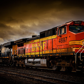 Burlington Northern by Chuck Collins - Transportation Trains
