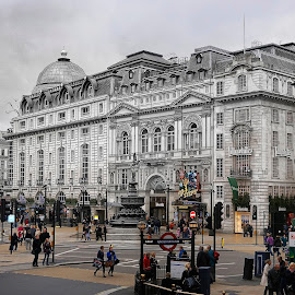 Piccadilly Circus by Mauro Maione - City,  Street & Park  Historic Districts ( piccadilly circus, london, maione, street, morning, selective color, pwc )