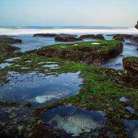 kukup'''' by Sandi Nopri yanto - Landscapes Waterscapes