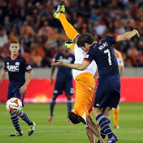 Dynamo by Eric Smith - Sports & Fitness Soccer/Association football ( new england, football, dynamo, bostin, houston, revolution, texas, mls, bbva compass, soccer )