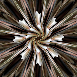 Twisted Burst by Tina Dare - Illustration Abstract & Patterns ( abstract, patterns, designs, distorted, curves, shapes )