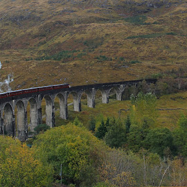 The Jacobite by Chuck Zacharias - Landscapes Travel ( scotland, autumn, steam train, train, october, bridge, highlands, landscapes,  )