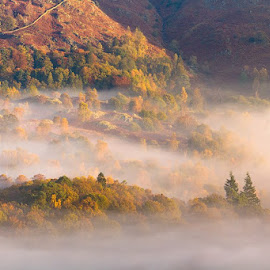 'Peeking Through' - an elevated vantage point looking over the autumn colours peeking through the Lakeland mist. by Paul Sutton - Landscapes Mountains & Hills