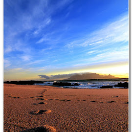 Tracks into time by Wessel Badenhorst - Landscapes Beaches (  )