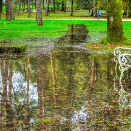 Park on flood by Oliver Švob - City,  Street & Park  City Parks ( canon, water, europe, karlovac, park, tree, bench, flood, croatia, town, hrvatska, city,  )