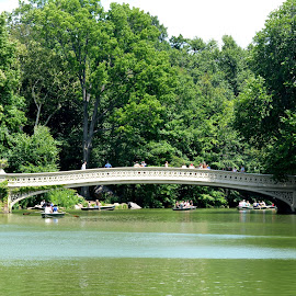 Bow Bridge by Leslie-Ann Boisselle - Novices Only Landscapes ( water, green, august, summer, bridge, central park )