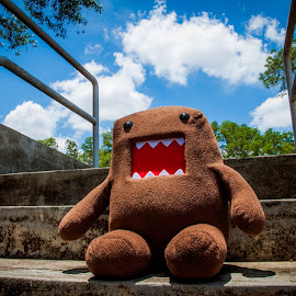 Sunshine Day with Domo by Justine Tsubaki - Artistic Objects Toys ( dolls, toy, sunny, domo, sunshine )