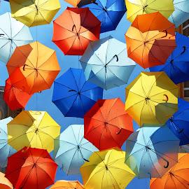 Colorful umbrellas by Antonio Amen - Artistic Objects Other Objects ( colorful umbrellas )