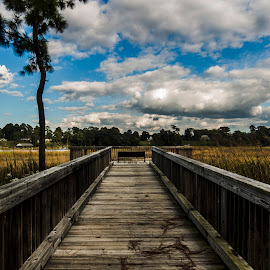 The Walk by Jonathan Saelens - Landscapes Travel ( clouds, adventure, sky, nature, travel, hiking, boardwalk )