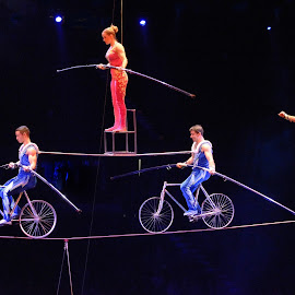 High Wire Act by Stephen Beatty - News & Events Entertainment