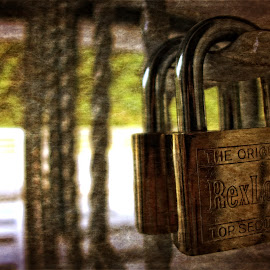 Padlock by Azhar Aziz - Artistic Objects Other Objects ( rexlock, original, lock, rusty, padlock )