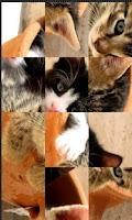 Screenshot of Cute Animals puzzle