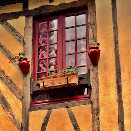 Fenetre normande by Ciprian Apetrei - Buildings & Architecture Architectural Detail ( detail, window, normandie, historical, public )