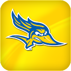 CSUB Athletics: Premium icon