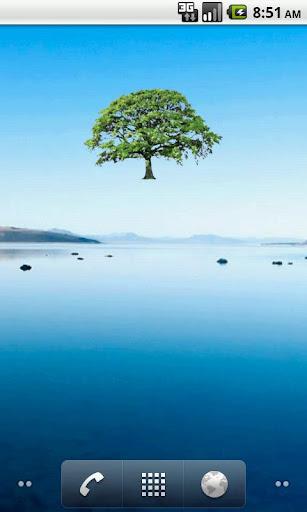 Oak Tree Summer Sticker
