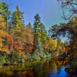 Linville River by Jfdsa Jfeqwoikldasf - Landscapes Forests