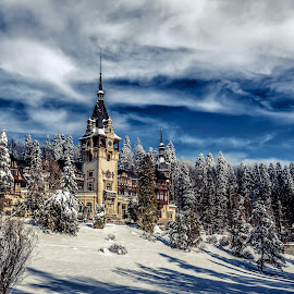 Castle on the hill by Cosmin Anghel - Landscapes Mountains & Hills ( clouds, winter, sunset, snow, castle )