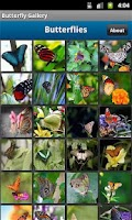 Screenshot of Butterfly Photo Gallery