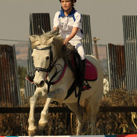 Pinky by Perfect Pix - Sports & Fitness Other Sports ( perfectpix, riding, horse riding, show jumping, jumping riding )