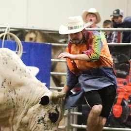Tag! You are it! by Cindy Hicks-Butler - Sports & Fitness Rodeo/Bull Riding