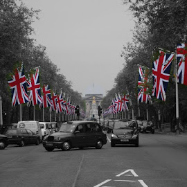 Taxis in the mall by Ross E - City,  Street & Park  Historic Districts ( taxi, london, royal family, black and white, the queen, london taxi, westminster, coloursplash, united kingdom, union jack )