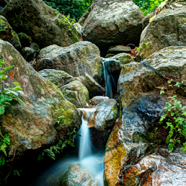 Munnar Kerala Water Fall  by Vyom Saxena - Nature Up Close Water ( water serene, water speed, water fall kerala, water fall, lowshutter speed water )