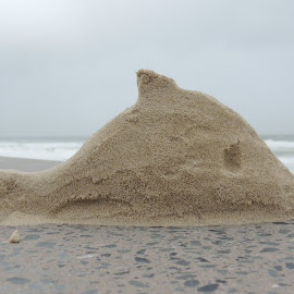 Sand Sculpture by Di Mc - Novices Only Objects & Still Life ( sculpture, sand, beach, whale )