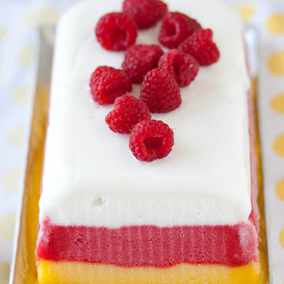 Tropical Sorbet Terrine