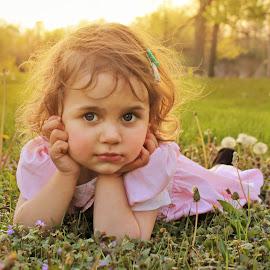 Girl in Field by Kitty Schaub - Babies & Children Child Portraits ( field, girl, sunset, toddler, flower )