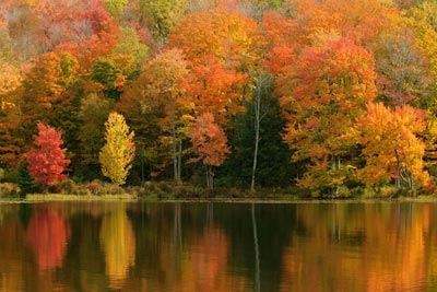 Fall_Foliage_Lake.jpg