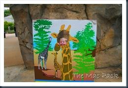 Trip to Birmingham Zoo