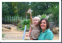 Trip to Birmingham Zoo (19)