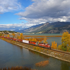 Columbia Lake by Frank Keller - Transportation Trains ( columbia lake, canada, railroad, fall, trains, color, colorful, nature )