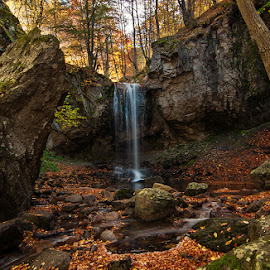 Somewhere in the forest by George Petridis - Landscapes Forests ( autumn, colors, waterfall, forest, october, leaves, fall, color, colorful, nature )